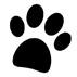 hund_icon